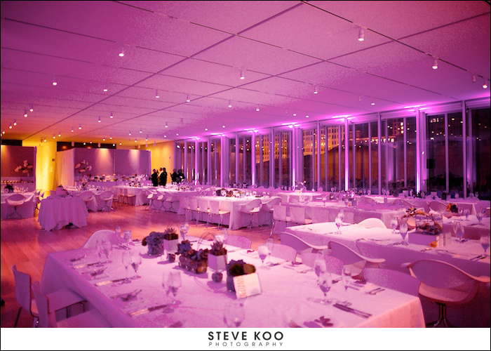 Modern Wing of the Art Institute Chicago Wedding Venues