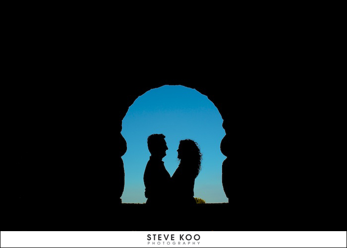 Silhouette Engagement