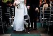 wedding-ceremony-dog