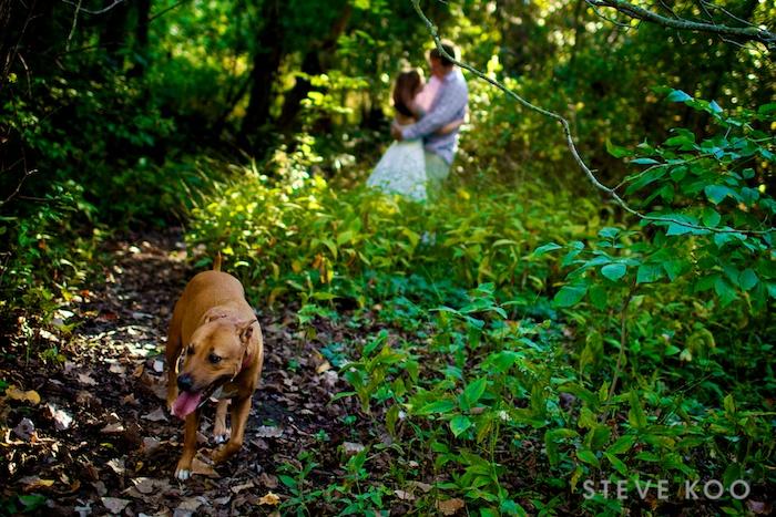 trash-dress-wedding-photos