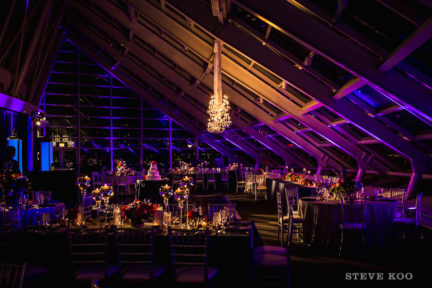adler-planetarium-wedding-photo-001
